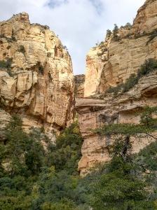 Golden Cliffs on Summit - Long Canyon Trail, Sedona, Arizona